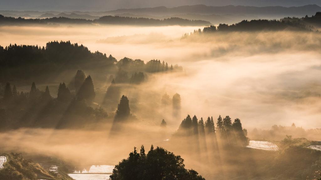黄金色の輝く雲海(星峠)